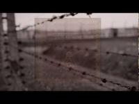 Golin - Potrzebujemy Wojen