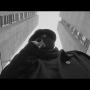 Radzias - Z dachu wieżowca feat. Filipek (prod. Fredrick) OFFICIAL VIDEO