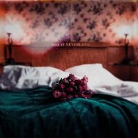 Buck65-neverlove